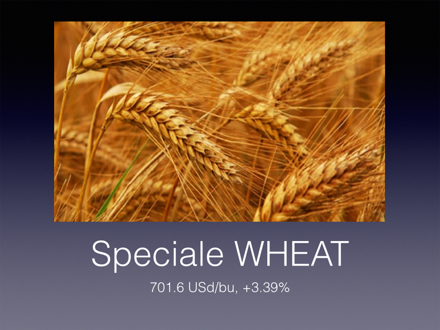 After The Floor: speciale Wheat