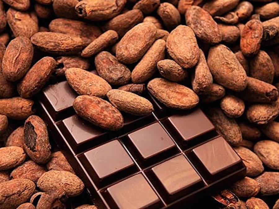 Cacao: cosa ci attende nel 2017