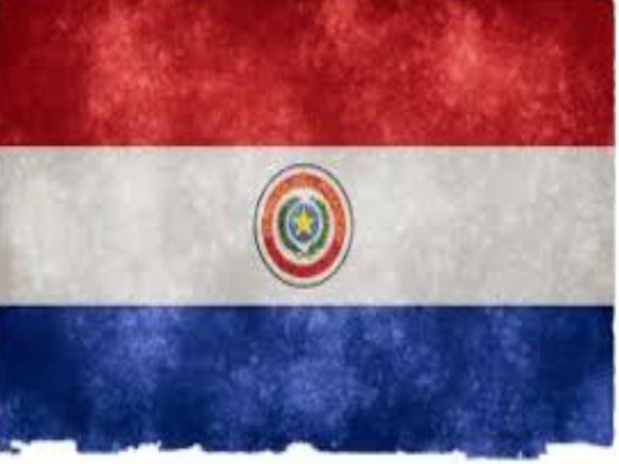 Soia: raccolti record in Sud America