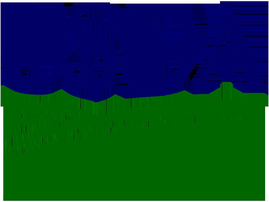 Soia e Cotone, USDA: semine USA in crescita