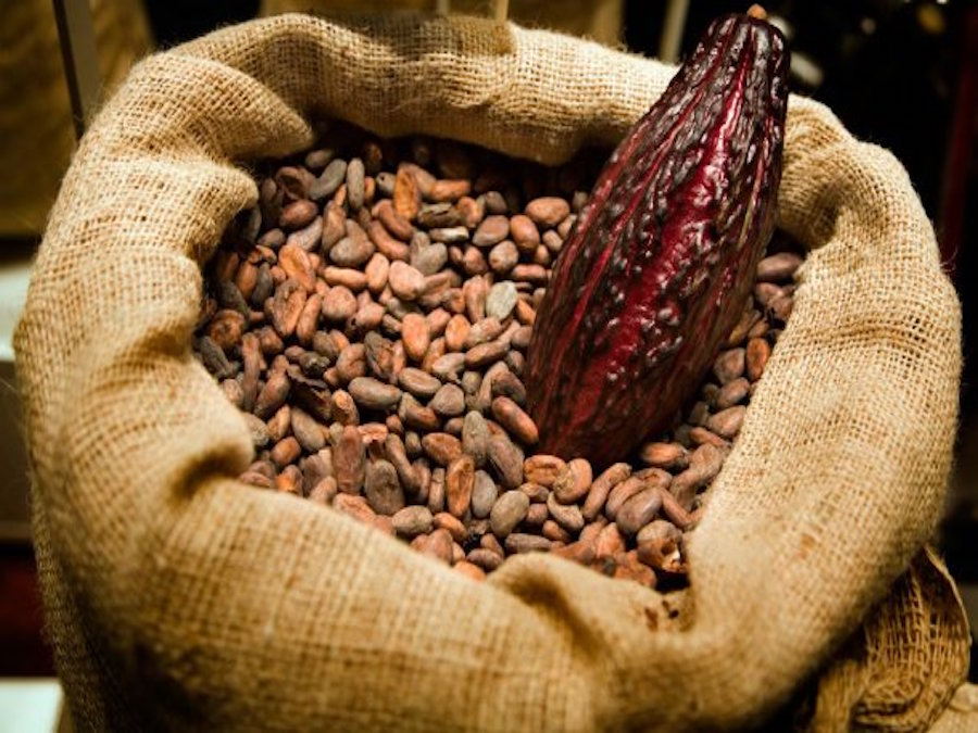 Cacao, Cameroon: dimezzate le tasse sull'export