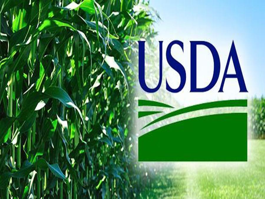Cereali, Speciale USDA: i prezzi fanno Boom!
