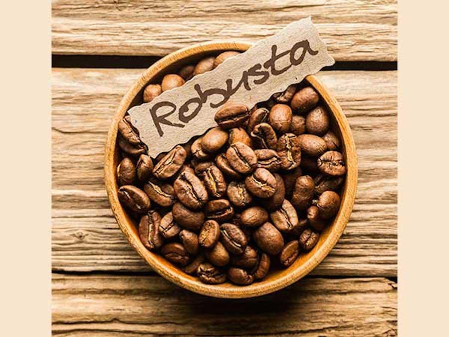 Caffè, IBGE: la produzione di Robusta è attesa in forte calo